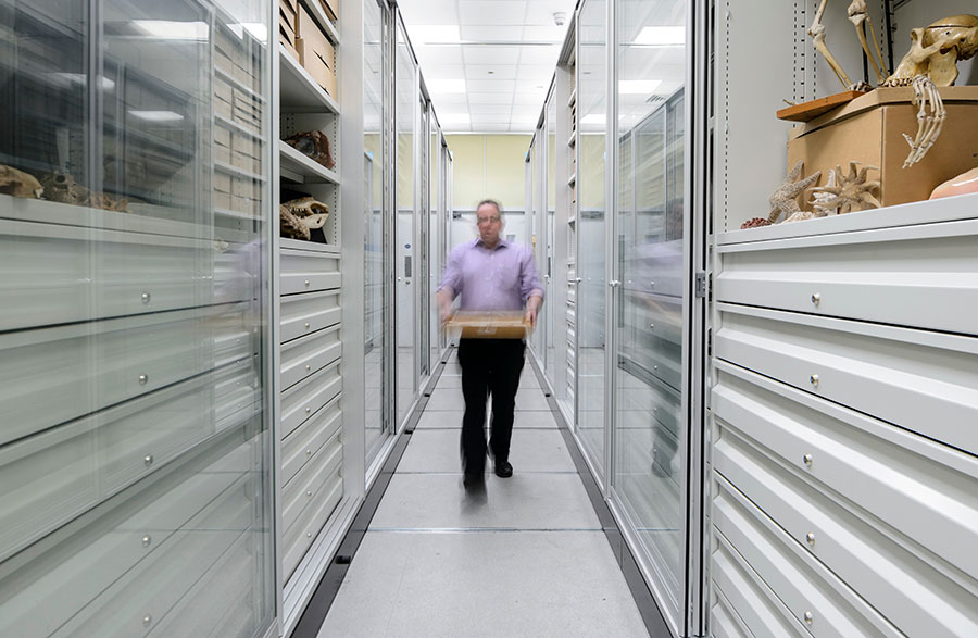 Visible_storage_system_Lapworth_Museum_of_Geology